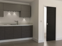 Pocket Sliding Doors